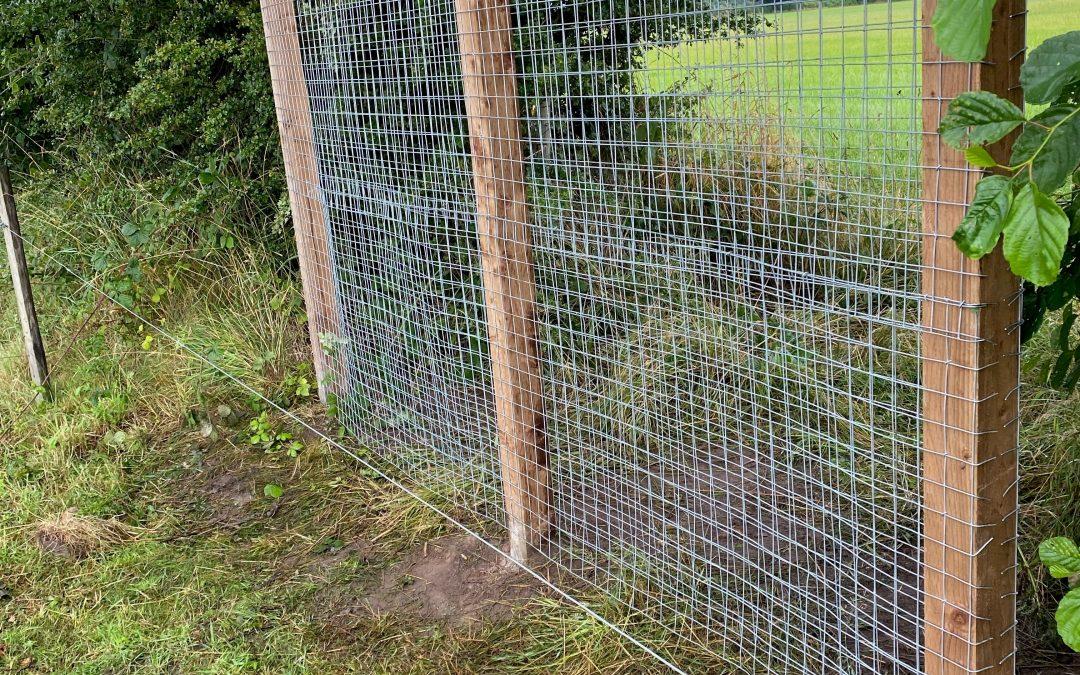 Site Maintenance – Fencing